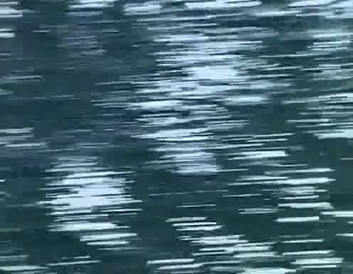 baywatch, datamosh, glitch, CJ GIFs