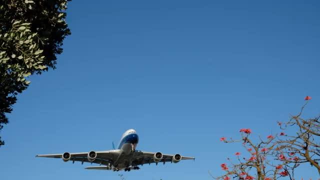 Watch and share China Southern A380 Landing At LAX GIFs on Gfycat