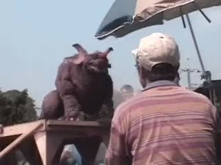 Watch this jazz hands GIF on Gfycat. Discover more Baragon, GMK, Godzilla, baragon, behind the scenes, gmk, godzilla, jazz hands, kaiju GIFs on Gfycat