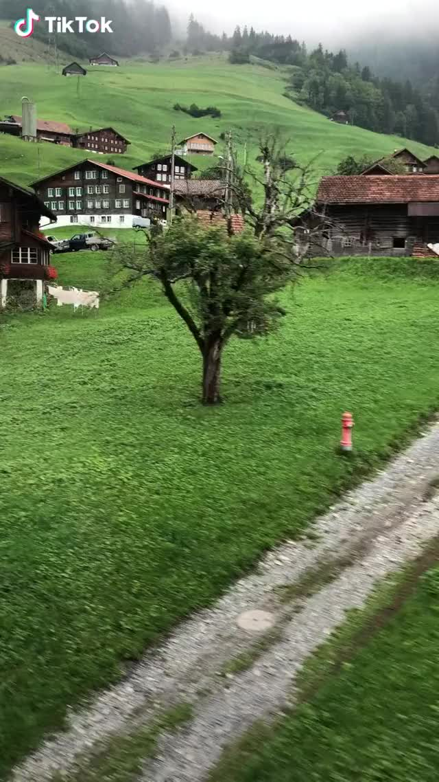 Watch 🔥 Switzerland is really beautiful GIF by interesting (@interesting) on Gfycat. Discover more nature GIFs on Gfycat