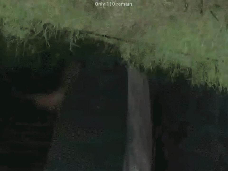 forsen, nazi mom (reddit) GIFs