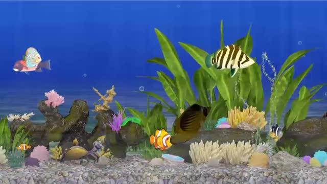 Watch and share VDO 3D Animation (ตู้ปลา3) GIFs by baifern28 on Gfycat