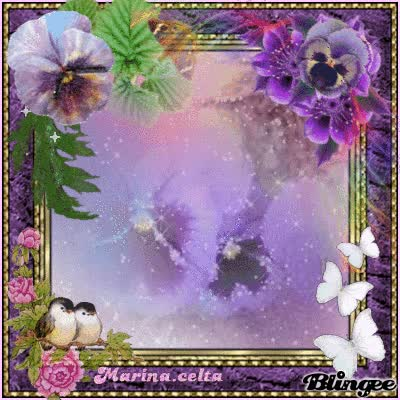 Watch and share I Love Pansy Flowers GIFs on Gfycat