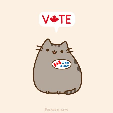 Watch and share Election GIFs and Pusheen GIFs by jenthegeek on Gfycat