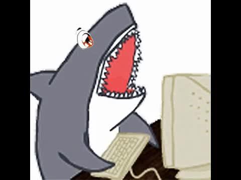 More Tsundere Sharks! GIFs