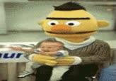 Watch and share Bert GIFs on Gfycat