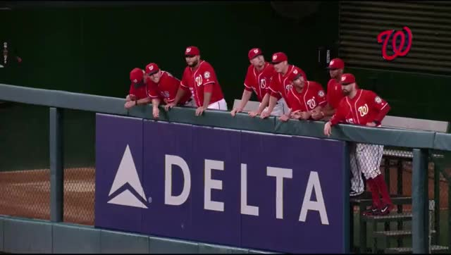 Watch Bullpen and Bryce GIF by efitz11 (@efitz111) on Gfycat. Discover more nationalsgifs GIFs on Gfycat
