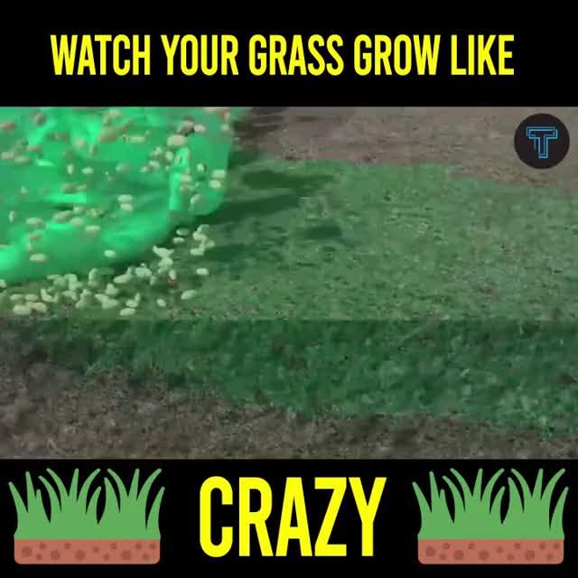 Watch and share Dec Liquid Spray Lawn Seeder GIFs by Nikkie Cinco Munda on Gfycat