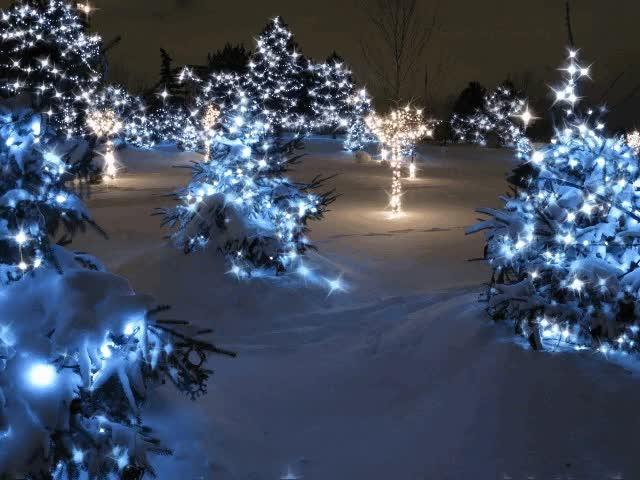 Watch and share Animated Christmas Lights Gif | Animated Christmas Lights GIFs on Gfycat