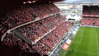 sportsarefun, Belgian soccer fans commence match with TP'ing the stadium (reddit) GIFs