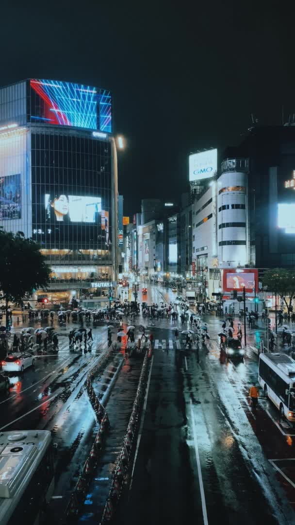 Watch and share Shibuya Scramble In The Rain GIFs by zerotwelve on Gfycat