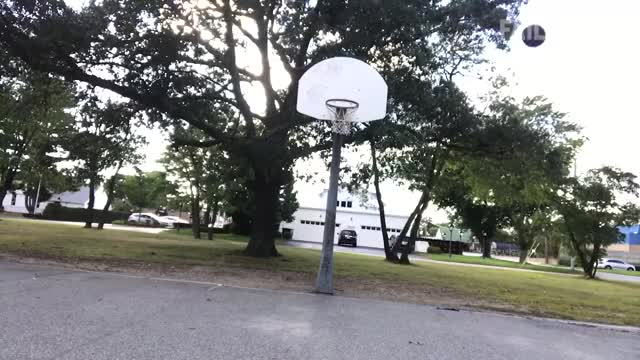 Watch and share Basketball GIFs and Reddit GIFs by Despot1 on Gfycat