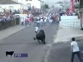 Watch deadly bull GIF on Gfycat. Discover more bull, bullfighting, funny GIFs on Gfycat