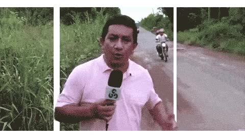 Watch Reporter Bus GIF on Gfycat. Discover more related GIFs on Gfycat
