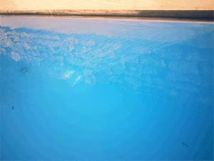 Watch instant ete piscine GIF on Gfycat. Discover more related GIFs on Gfycat