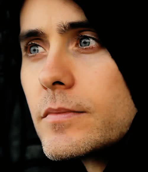 Watch Jared Leto GIF by Reaction GIFs (@sypher0115) on Gfycat. Discover more Jared Leto, JaredLeto, celeb_gifs, celebrity GIFs on Gfycat
