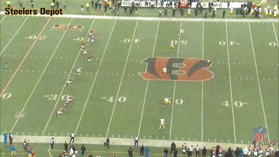 Watch st-bengals-1 GIF on Gfycat. Discover more related GIFs on Gfycat
