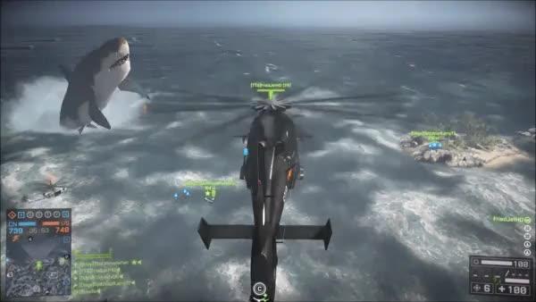 Watch and share BattleField4 Shark GIFs on Gfycat