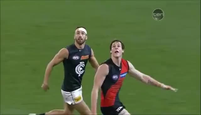 Watch crazy afl GIF on Gfycat. Discover more afl, gif, specky GIFs on Gfycat
