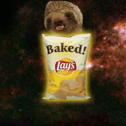 Watch and share Sloth In Space GIFs and Potato Chips GIFs on Gfycat