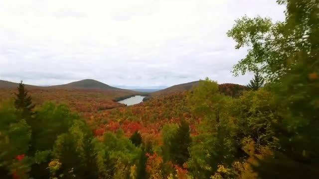 Watch This is Vermont Foliage GIF on Gfycat. Discover more dr GIFs on Gfycat