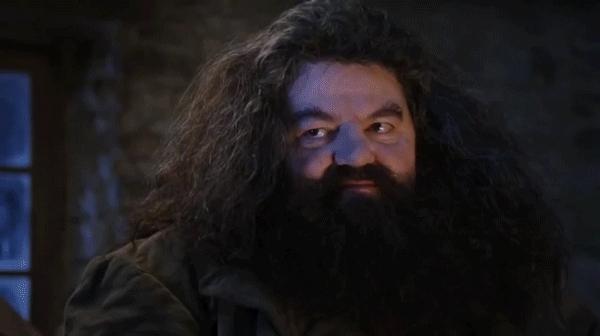 Daniel Radcliffe, Robbie Coltrane, askreddit, gaming, spiderbro, YOU'RE A WAZARD! GIFs