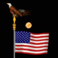 Watch and share Patriotic Flag Golden Bald Eagle Fireworks July 4th Celebrate Happy Icon Icons Emoticon Emoticons Animated Animation Animations Gif Gifs GIFs on Gfycat