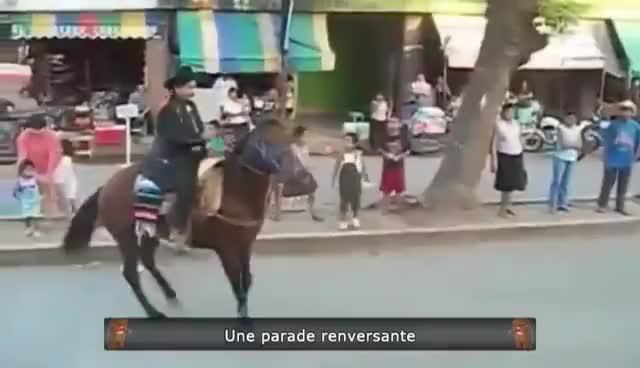 Watch this trending GIF on Gfycat. Discover more horse fail GIFs on Gfycat