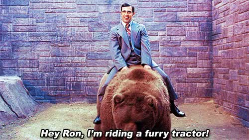 Watch this anchorman GIF on Gfycat. Discover more anchorman, brick tamland, steve carrell GIFs on Gfycat