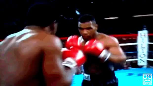 Watch tyson GIF on Gfycat. Discover more related GIFs on Gfycat