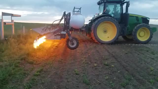 Watch Flaming corn GIF on Gfycat. Discover more burn, corn, farming, flaming, reddit GIFs on Gfycat