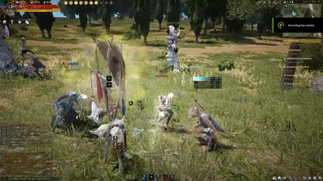 Watch and share Bdo GIFs by xactfoxy on Gfycat