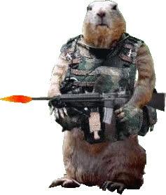 soldat,            gif animé GIFs