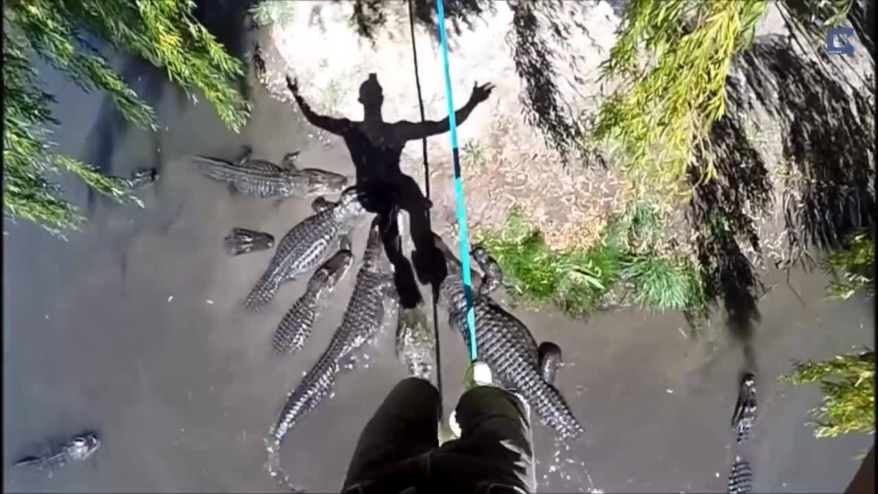 catersnewsagency, slackline, slacklining (film subject), Slacklining Over Alligator Pool GIFs