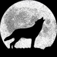 Watch and share HUSKY, WOLF GIFs on Gfycat