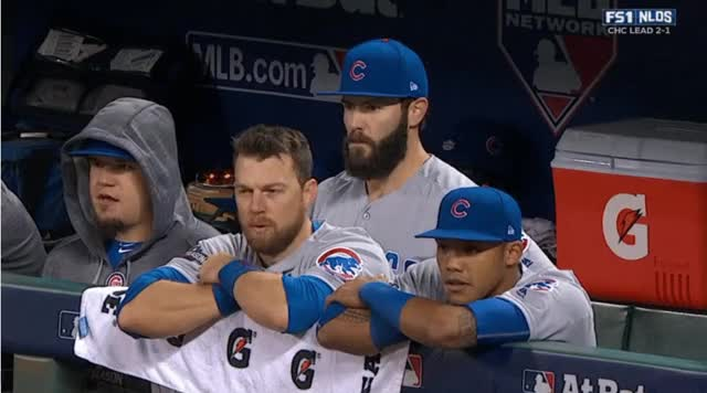 Watch Head Turn GIF on Gfycat. Discover more Cubs GIFs on Gfycat