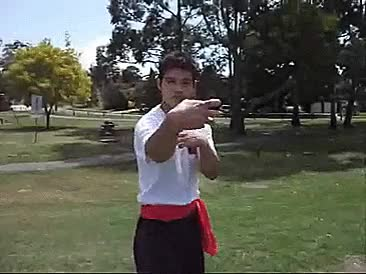 Watch Eight Immortals Drunken Boxing (video) GIF on Gfycat. Discover more 8 Immortals, applications, drunken boxing, form, gutsanduppercuts, kung fu, martial arts, zui quan GIFs on Gfycat