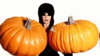 Watch this halloween GIF by The GIF Smith (@sannahparker) on Gfycat. Discover more autumn, elvira, fall, halloween, kiss, mistress of the dark, pumpkins GIFs on Gfycat