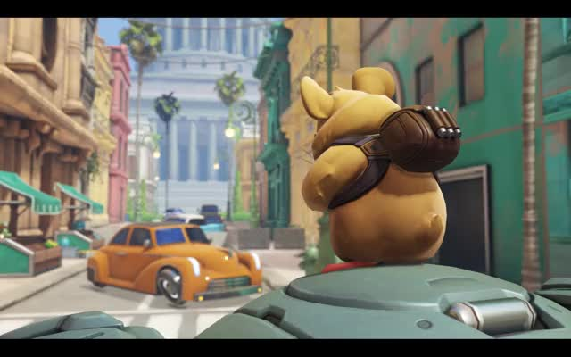 Watch and share Dramatic Groundhog Reference Hammond GIFs by Dusty Muffin on Gfycat