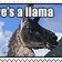 Watch and share Llama Llama Llama Duck! animated stickers on Gfycat