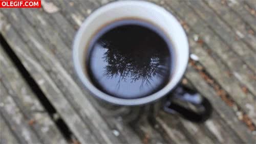 Watch and share GIF: Tomando Café Al Aire Libre GIFs on Gfycat