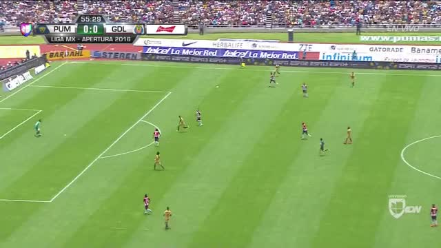 Watch and share Teampumas GIFs and Liga Mx GIFs on Gfycat