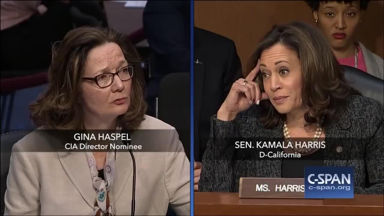 Torture, c-span, cia, cspan, kamala harris, senate, Exchange between Sen. Harris and CIA Director Nominee on torture (C-SPAN) GIFs