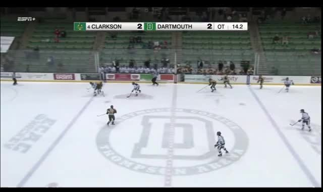 Watch and share Women's Hockey GIFs and Dartmouth GIFs by William Whyte on Gfycat