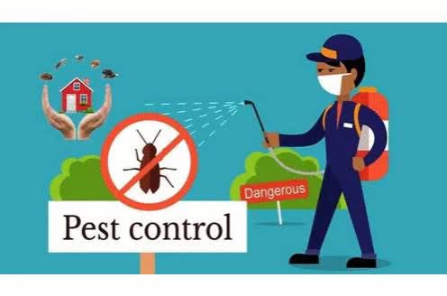 Watch Kent Pest Control GIF by Kent Pest Control (@kentpestservice) on Gfycat. Discover more UK, pestcontrol, pests, services GIFs on Gfycat