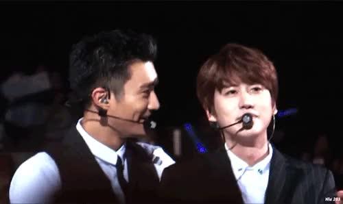 Watch Some Kyuhyun & Siwon moments at KCON15LA :)  GIF on Gfycat. Discover more kcon 2015, kyuhyun, siwon GIFs on Gfycat