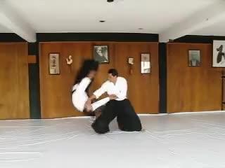 aikido, mexico aikido GIFs