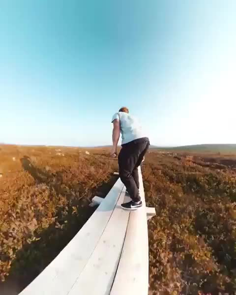 Watch and share Skateboarding GIFs by Jackson3OH3 on Gfycat