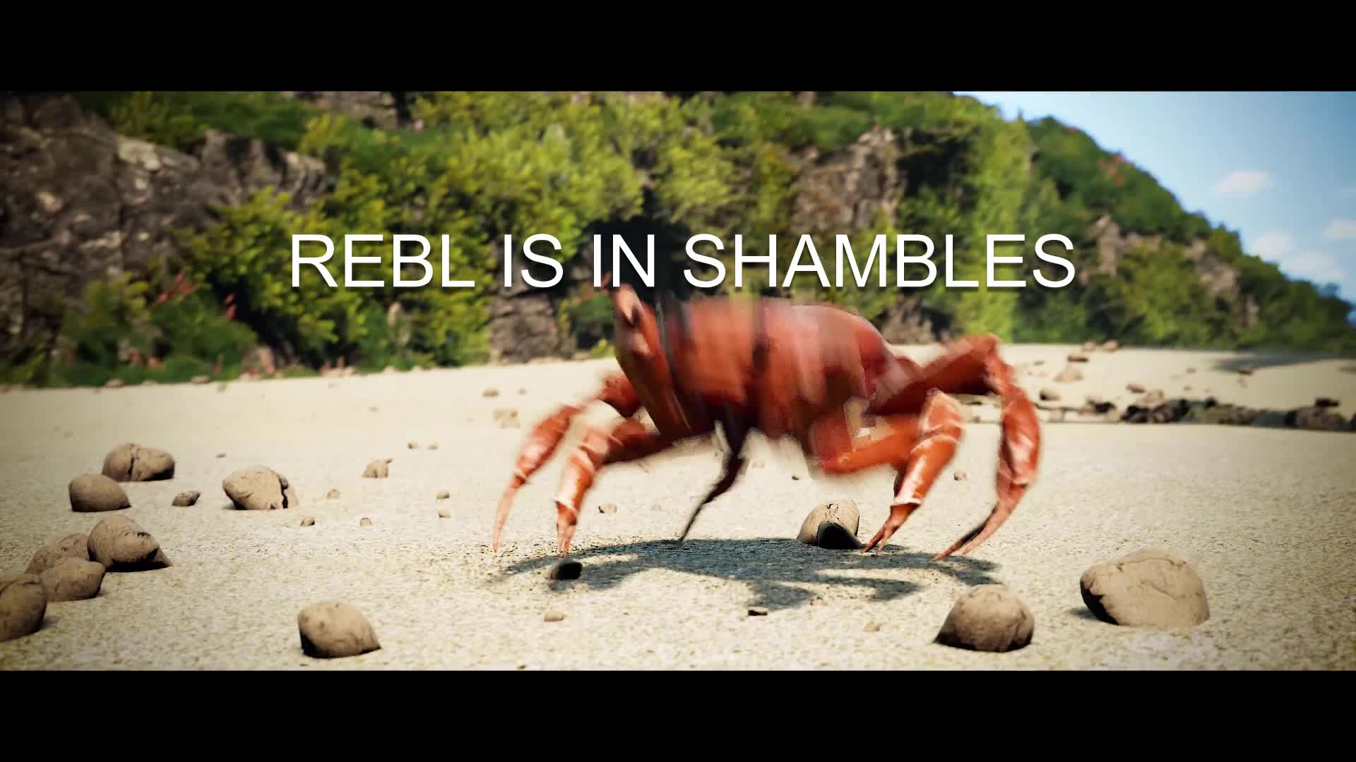 REBL is in shambles GIFs