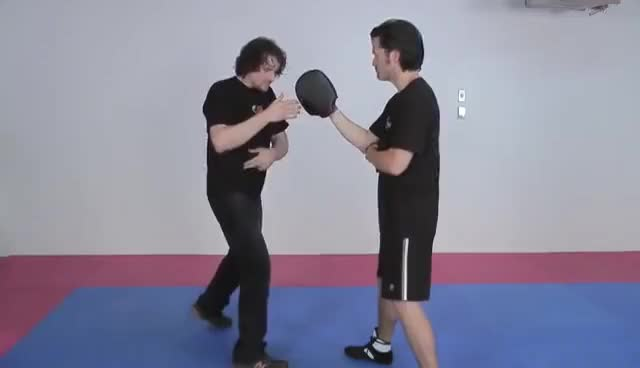 Watch Secrets of Punching Power: An Introduction to Power Mechanics GIF on Gfycat. Discover more related GIFs on Gfycat